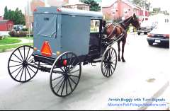 Amish Horse and Buggy - With Turn Signals!